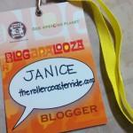 On My Blogapalooza 2014 Experience