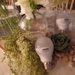 Orbik: On Energy Efficient Lighting Solutions